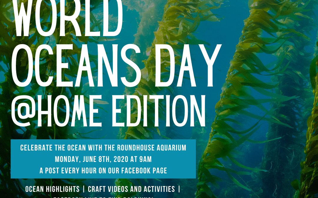 World Oceans Day @Home Edition