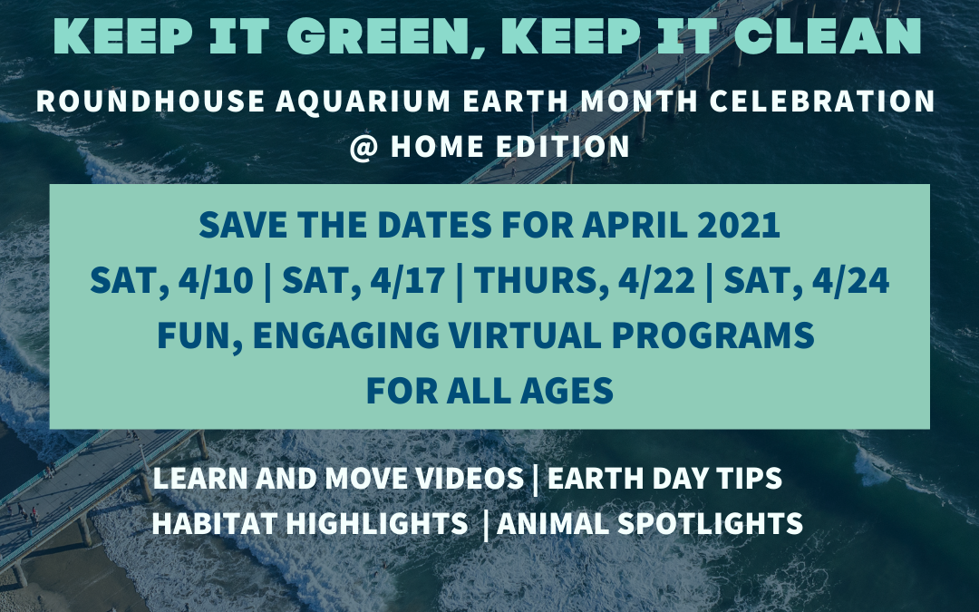 Keep It Green, Keep It Clean Earth Month Celebration @Home Edition