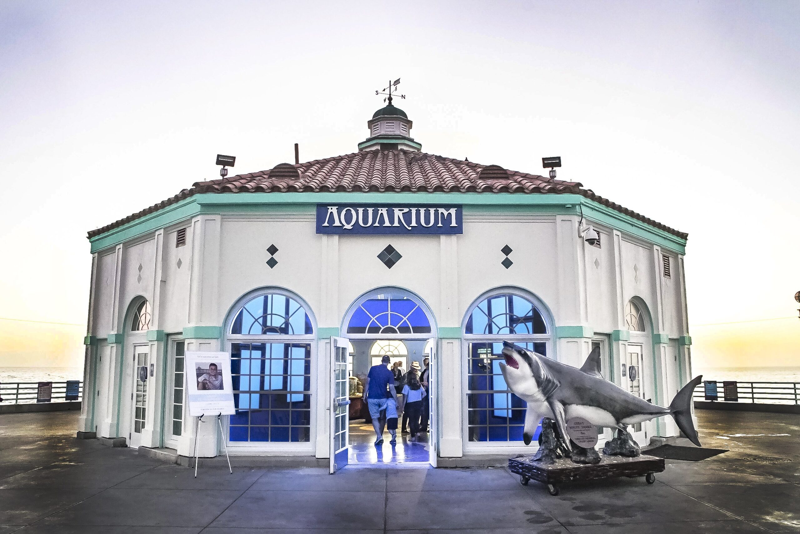 Roundhouse Aquarium - Roundhouse Aquarium Teaching Center - Manhattan  Beach, California